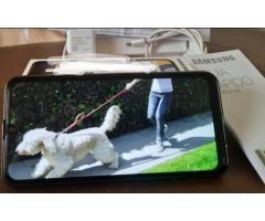 Celular Samsung M31